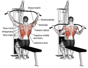 Benefits of a Lat Pulldown Machine